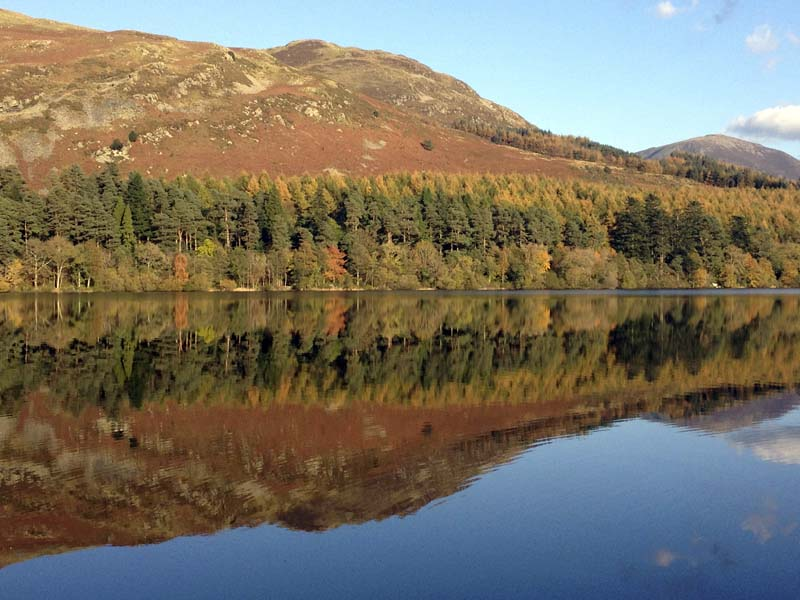 Reflected Larch and Low Fell