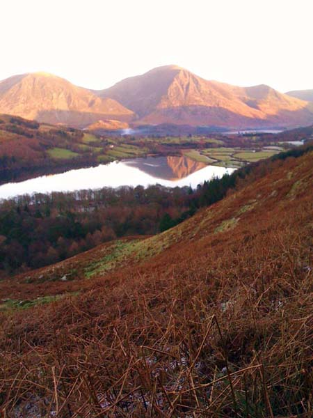 A stroll above Loweswater, reflecting Grassmore